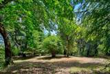 21095 Old Well Road - Photo 10
