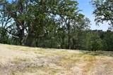 13 Long Ridge Trail - Photo 11
