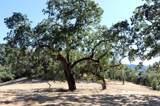 39 Arroyo Sequoia - Photo 7