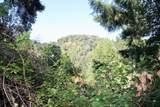 5588 Alpine Road - Photo 23