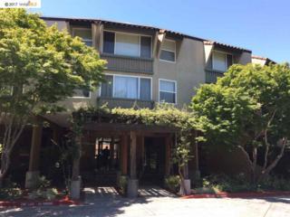 1087 Murrieta Blvd #331, Livermore, CA 94550 (#40782866) :: Realty World Property Network