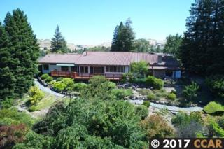 470 Green View Dr, Walnut Creek, CA 94596 (#40783022) :: Realty World Property Network