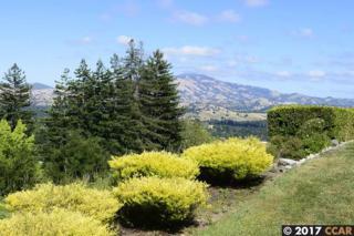 1801 Skycrest Dr #8, Walnut Creek, CA 94595 (#40783055) :: Realty World Property Network