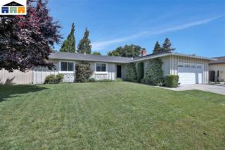 2755 Marsh Dr, San Ramon, CA 94583 (#40783094) :: Realty World Property Network