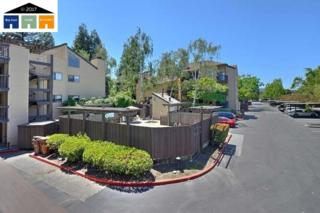 99 Cleaveland Road #32, Pleasant Hill, CA 94523 (#40783103) :: Realty World Property Network