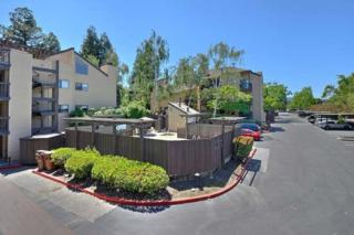 99 Cleaveland Road #32, Pleasant Hill, CA 94523 (#ML81652907) :: Realty World Property Network