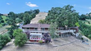 36 Sherburne Hills Road, Danville, CA 94526 (#ML81653389) :: Realty World Property Network