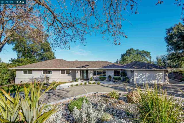 15 Lower Golf Road, Pleasanton, CA 94566 (#40856883) :: Armario Venema Homes Real Estate Team