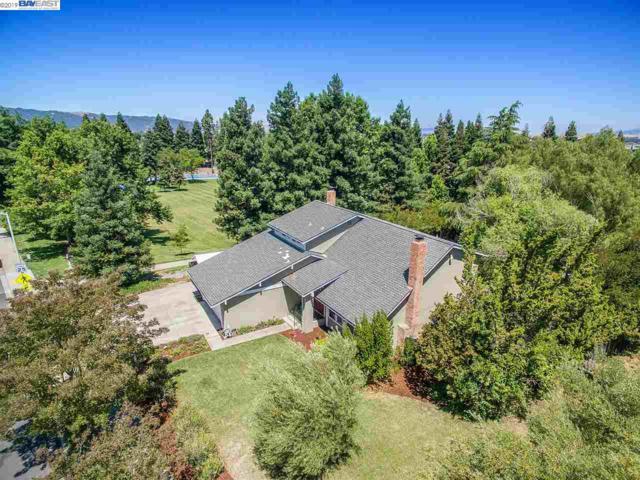 560 Tawny, Pleasanton, CA 94566 (#40872002) :: Armario Venema Homes Real Estate Team