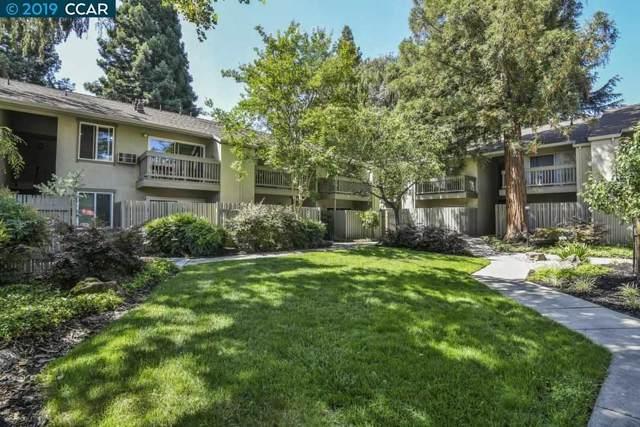 1251 Homestead Ave #172, Walnut Creek, CA 94598 (#40874802) :: Armario Venema Homes Real Estate Team
