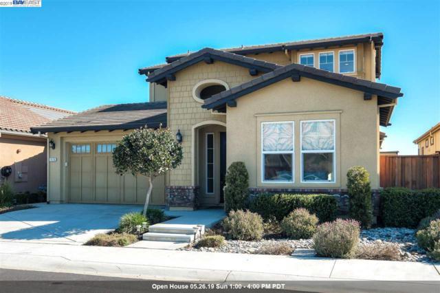 1516 Chatham Pl, Pleasanton, CA 94566 (#40853946) :: The Grubb Company