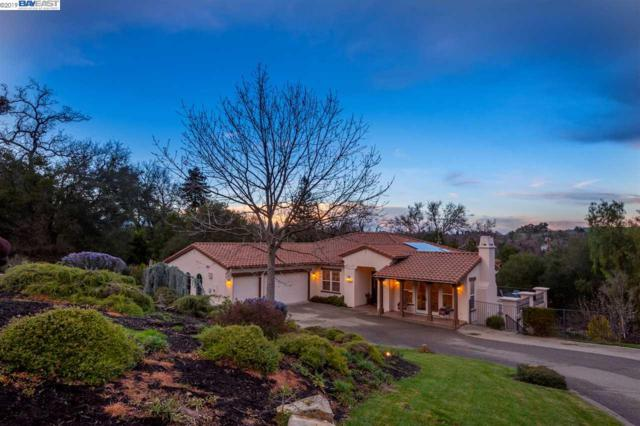448 Bunker Ln, Pleasanton, CA 94566 (#40856835) :: Armario Venema Homes Real Estate Team