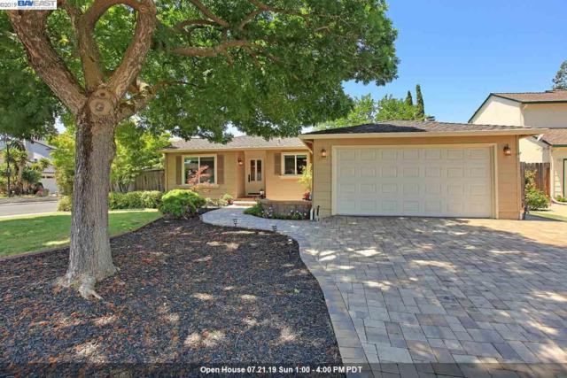3902 Mount Mckinley Ct, Pleasanton, CA 94588 (#40870942) :: Armario Venema Homes Real Estate Team