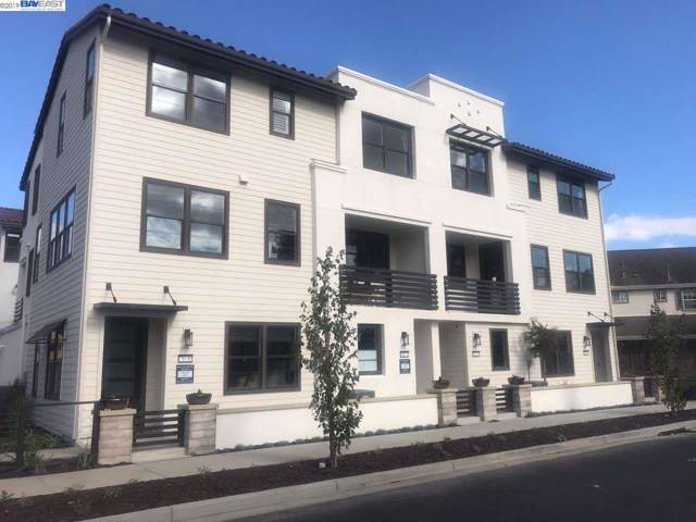 37515 Conductor Terrace, Fremont, CA 94536 (#40882742) :: The Lucas Group