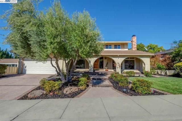 1235 Vintner Way, Pleasanton, CA 94566 (#40889195) :: Armario Venema Homes Real Estate Team