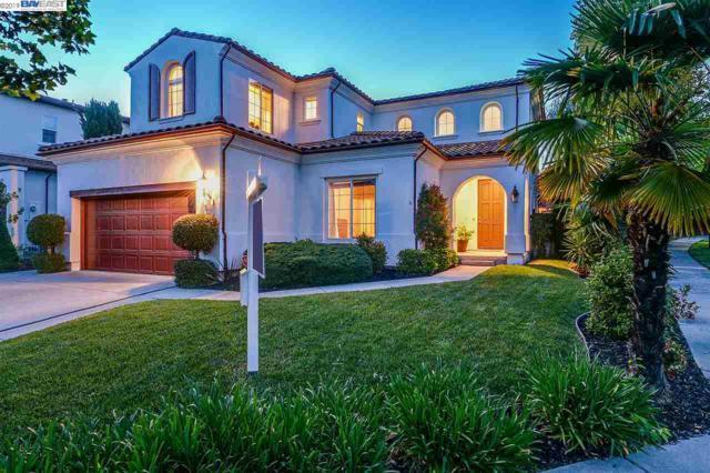 100 Black Calla Ct, San Ramon, CA 94582 (#40863587) :: Armario Venema Homes Real Estate Team