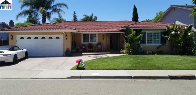 4828 Canary Dr, Pleasanton, CA 94566 (#40868727) :: Armario Venema Homes Real Estate Team