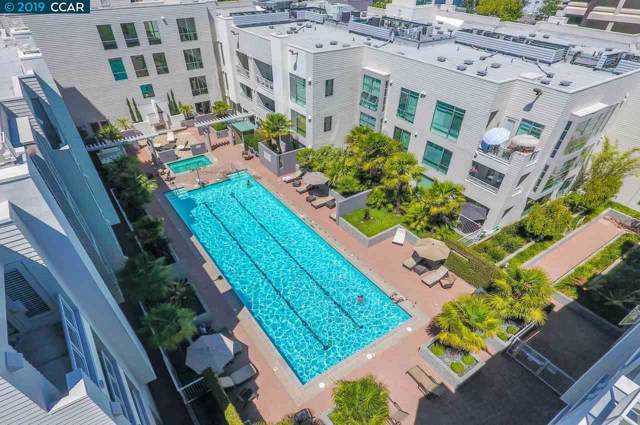 1655 N California Blvd #321, Walnut Creek, CA 94596 (#40874302) :: Blue Line Property Group