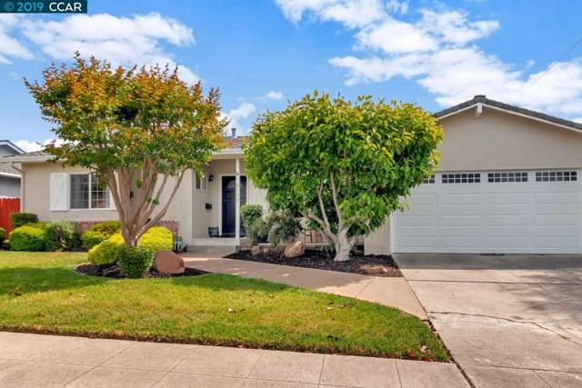 8335 Cavalier Ln, Dublin, CA 94568 (#40866023) :: Armario Venema Homes Real Estate Team