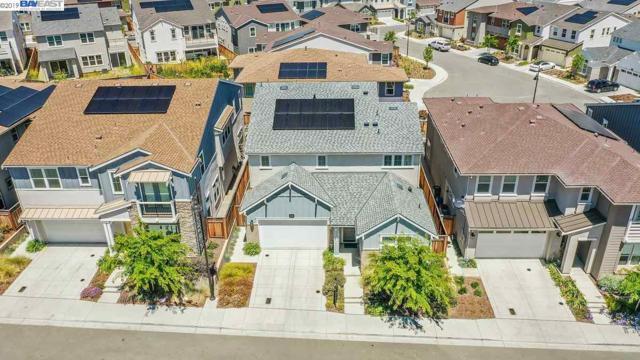 4497 Alexander Valley Way, Dublin, CA 94568 (#40868599) :: Armario Venema Homes Real Estate Team