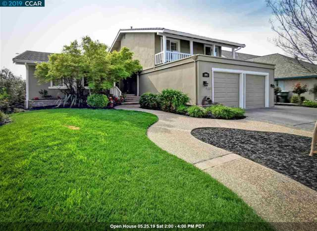 1993 Paseo Del Cajon, Pleasanton, CA 94566 (#40859700) :: Armario Venema Homes Real Estate Team