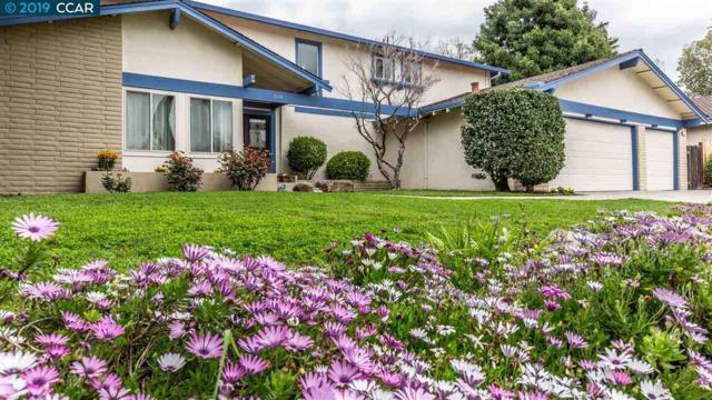 519 Banyan Cir, Walnut Creek, CA 94598 (#40859930) :: The Grubb Company
