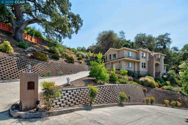 309 Sequoia Terrace, Walnut Creek, CA 94595 (#40857999) :: Realty World Property Network