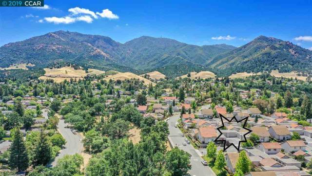 45 Long Creek Cir, Clayton, CA 94517 (#40868362) :: Armario Venema Homes Real Estate Team