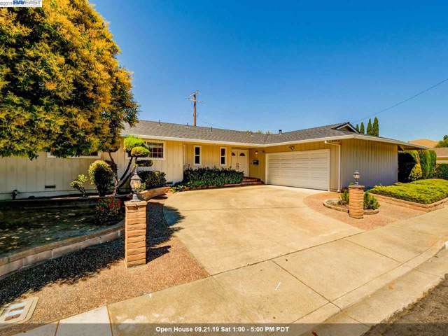 1299 Durillo Ct, Fremont, CA 94539 (#40878632) :: Blue Line Property Group