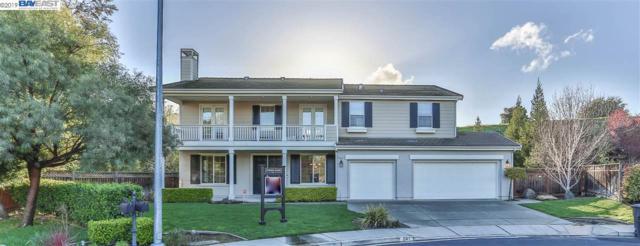 241 Napier Ct, Pleasanton, CA 94566 (#40858805) :: Armario Venema Homes Real Estate Team