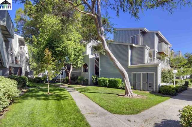 3475 Deerwood Terrace #301, Fremont, CA 94536 (#40878571) :: The Lucas Group