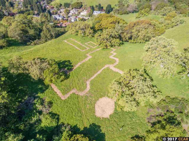 1240 Monticello Rd, Lafayette, CA 94549 (#40775262) :: Armario Venema Homes Real Estate Team