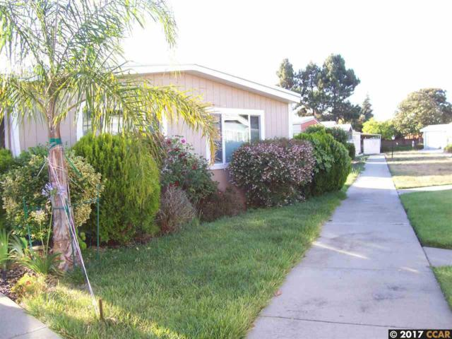 2241 Dalis Dr, Concord, CA 94520 (#40787760) :: Team Temby Properties
