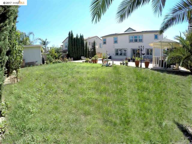 405 Silverspur Lane, Oakley, CA 94561 (#40790181) :: Team Temby Properties