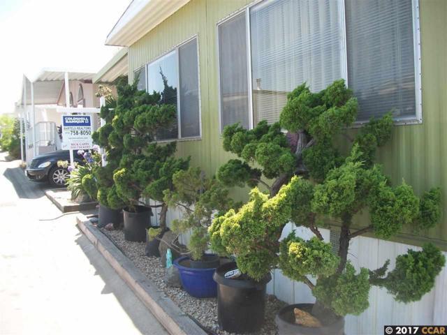 16401 San Pablo Ave #341, San Pablo, CA 94806 (#40790417) :: Team Temby Properties