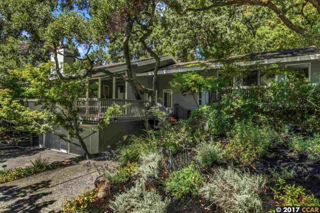 688 Old Jonas Hill Rd, Lafayette, CA 94549 (#40790525) :: Realty World Property Network
