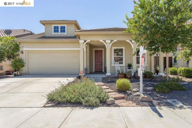 1371 Maple Dr, Oakley, CA 94561 (#40790599) :: Team Temby Properties
