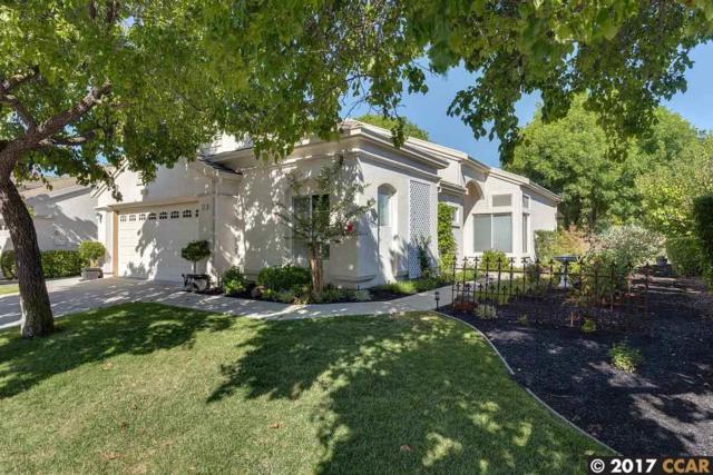 173 Honeygold Ln, Brentwood, CA 94513 (#40790816) :: Team Temby Properties