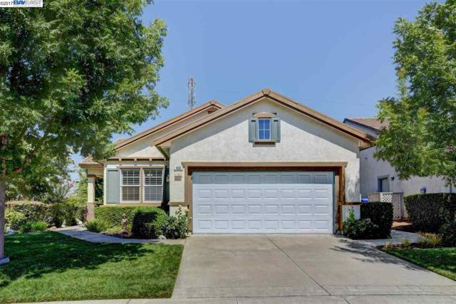 458 Tayberry Ln, Brentwood, CA 94513 (#40790965) :: Team Temby Properties