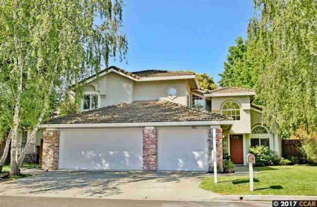 3356 Green Meadow Dr, Danville, CA 94506 (#40790984) :: Realty World Property Network