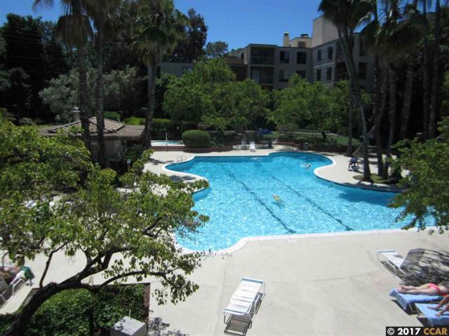 420 N Civic Dr #205, Walnut Creek, CA 94596 (#40791135) :: Realty World Property Network