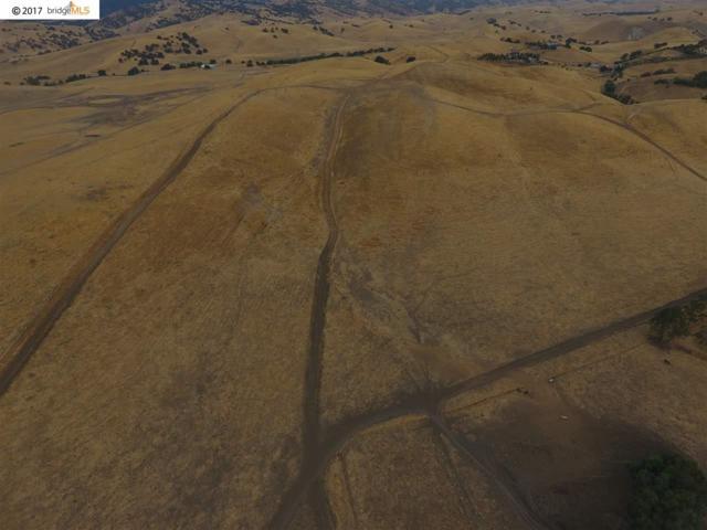 4418 Camino Vaqueros Way, Byron, CA 94514 (#40792320) :: Team Temby Properties