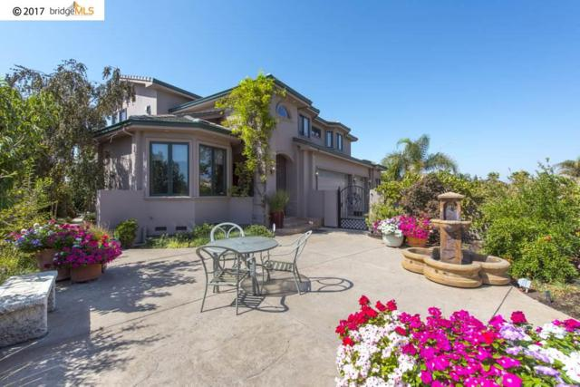 4320 Driftwood Pl, Discovery Bay, CA 94505 (#40793715) :: Team Temby Properties