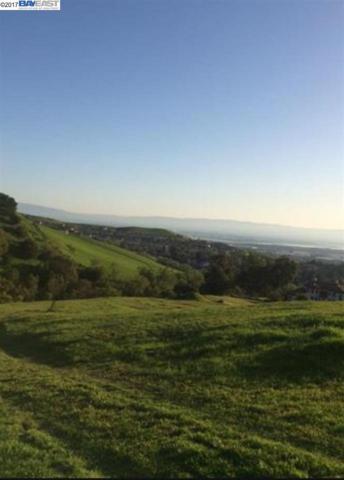0 Rancho Higuera Rd, Fremont, CA 94539 (#40795543) :: The Rick Geha Team