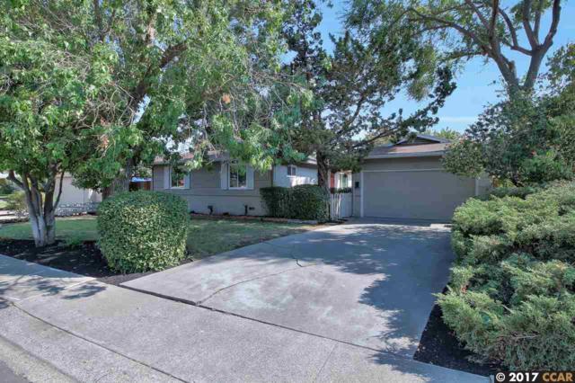 59 Viking Dr, Pleasant Hill, CA 94523 (#40797053) :: J. Rockcliff Realtors