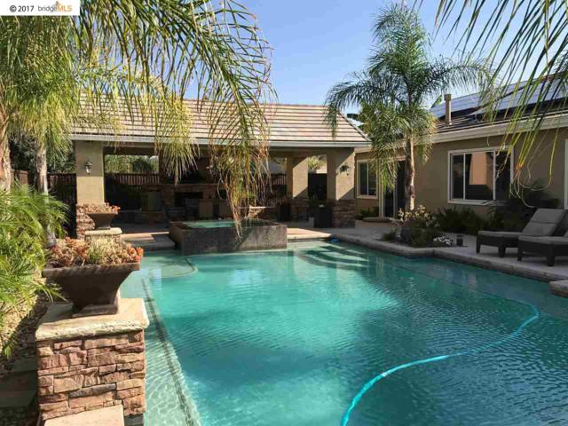 10 Gold Run Ct, Oakley, CA 94561 (#40797646) :: Team Temby Properties
