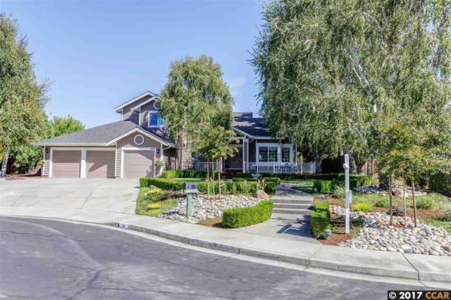 200 Julie Ct, Danville, CA 94506 (#40797777) :: Team Temby Properties