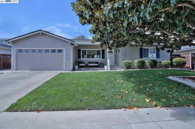 8160 Holanda Ln, Dublin, CA 94568 (#40797869) :: Realty World Property Network