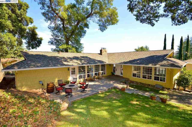 789 View Drive, Pleasanton, CA 94566 (#40797919) :: Realty World Property Network