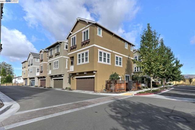 2621 Tamalpais Ter, Fremont, CA 94538 (#40798091) :: Realty World Property Network